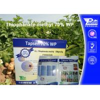 Quality Off - White Powder Systemic Fungicides Thiophanate - Methyl 70% WP for sale