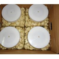 Buy cheap Fresh peeled garlic produced in China from wholesalers