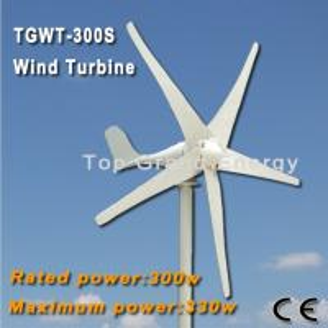 TGWT-300S 300W 12V/24V wind turbine Three phase permanent magnet AC synchronous generator