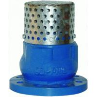 China Low Pressure 4 Flanged Foot Valve , PN16 Oil Cast Iron Foot Valve wholesale