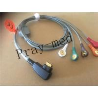 China Compatible DMS 300 system holter 5lead ecg cable with 19pin snap wholesale