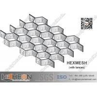 China Stainless Steel Hexmetal Grate   2.0X20X50mm   China Hexmetal Manufacturer wholesale