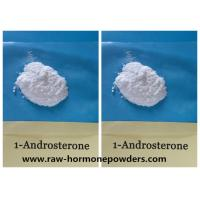 China CAS 76822-24-71-Andro  Prohormone Powder 1-DHEA 1-Androsterone wholesale