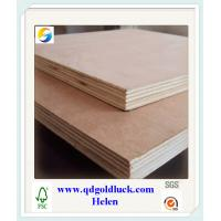 China BB/CC Grade Bintangor /Okoume Faced Commercial Plywood wholesale