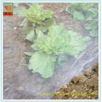 China Plant and crops protection–Anti insects mesh, insect netting,PE Woven Netting,Customized Colors wholesale
