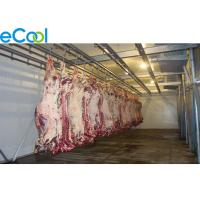 China 5000 Tons Large Meat Processing Cold Room , Beef Processing Cold Storage Room wholesale