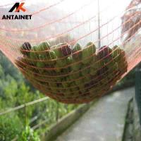Quality 100% virgin HDPE 70-150gsm  plastic olive collection netting for sale