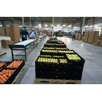 China Farm Buildings And Structures wholesale