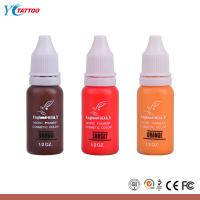 China England KLAY Eternal Tattoo Ink , Colorful Makeup Micro Tatoo Pigment wholesale