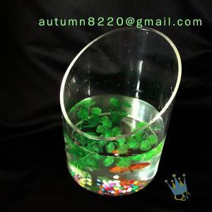 China Modern acrylic aquarium fish tank wholesale