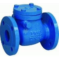 China Din F6 Cast Iron Swing Check Valves wholesale