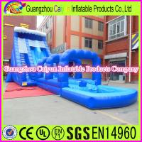 China Blue Color Giant Inflatable Water Slide Supplier wholesale