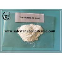 China Muscle Building Anabolic Steroids Testosterone Base White Powder for Gaining Muscle CAS 58-22-0 wholesale