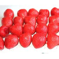 China Strawberry Organic Canned Fruit Naturally Sweet Flavor 2 YEARS Shelf Life wholesale