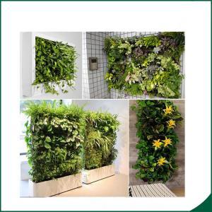China 56 Pocket Planter Bag Garden Hanging Vertical Planter Bag Indoor Outdoor Herb Pot Decor wholesale