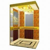 China Home/Villa Elevator, Customized Designs are Accepted, Convenient to Install, CE Certified wholesale