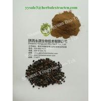 Wholesale Oriental Raisin Tree Extract, Stay sober products, 10:1, Top quality for beverage use, Shaanxi Yongyuan manufacturer from china suppliers