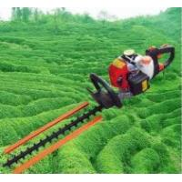 Wholesale HT230D Hedge trimmer from china suppliers
