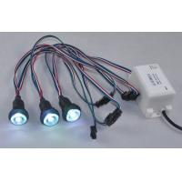 China 12V Full color IP68 LED SPA Light with color changing with CE RoHS wholesale