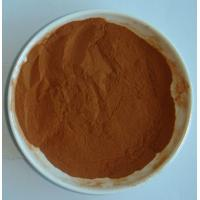 China Apple Extract,Apple Fruit Extract,Apple Polyphenols,Pyrus Malus Fruit Extract,Malus sylves wholesale
