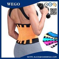 China Waist Trimmer Belt Back Support Slimming Band Waist Support wholesale