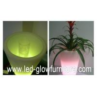 China Round / Square / Cube and champagne LED Flower Pots lights , multi - colored led planter pots wholesale