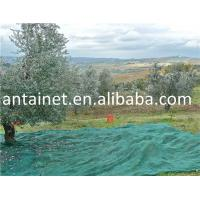 China NEW HDPE Plastic Olive Harvest Nets wholesale