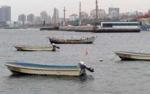China Yacht Sw 22 wholesale