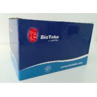 China Blood DNA Extraction Kit Midi Kit For Rapid Preparation Of Genomic DNA wholesale