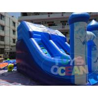 Quality Frozen Commercial Inflatable Water Slides / Double Lane Water Slide 0.55 PVC for sale