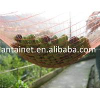 China HDPE Agriculture Fruit/Olive Net/Harvest Nets/Collection/Collecting Net wholesale