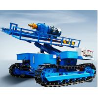 China Durable Truck Mounted Water Well Drilling Rigs , Water Well Drilling Machine wholesale