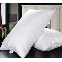 China Cheaper duck down feather  natual good filling white pillow insert with piping on sale