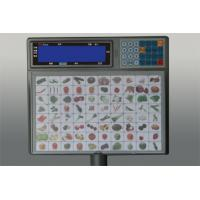 Quality Self Service Scale,label scale manufacturer,Scale manufacturer,platform scale for sale