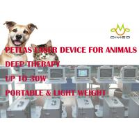 China Lightweight Veterinary Laser Equipment / Device Provide Accelerated Pain Relief And Healing wholesale