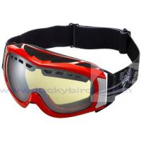 Wholesale ski goggles OEM welcomed dual lens anti fog from china suppliers