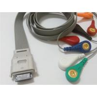 China Compatible biomedical bi9800/9000 7leads ecg holter cable wholesale