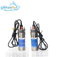 China Whaleflo WEL2460-30 24V 12LPM Max Lift 100 M 5.0 A DC Solar Powered Submersible Water Pump System For Farm Irrigation on sale
