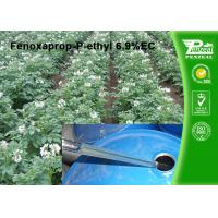 China Post Emergent Selective Herbicide Powder Fenoxaprop-P-Ethyl 6.9% EC wholesale