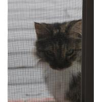 China Hot sale Reliable protection and safe Pet screen mesh made in China wholesale