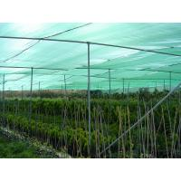 China Long Life HDPE Sand Color Agricultural Shade Nets / Greenhouse Shade Cloth wholesale