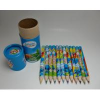 China 12 colors drawing pencil for kids ,high quality wood color pencil with custom logo wholesale