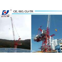 China 25m Jib 2.0ton Tip Load QTD2520 Small Luffing Jib Tower Crane with High Specifications wholesale