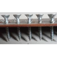 Quality White Screw for Metal channel, Fiber cement board /calcium ceiling board for sale