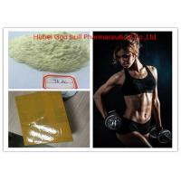 test 500 steroid info