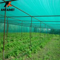 China Customized HDPE Agriculture Shade Net / Green Fencing Mesh Roll 35gsm - 380gsm wholesale