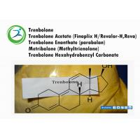 China CAS 10161-34-9 Finaplix / Revalor - H Trenbolone A Trenbolone Acetate Bodybuilding wholesale