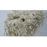 China instant Celery Powder wholesale