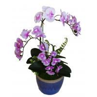 China Wholesale Potted Silk Orchids on sale
