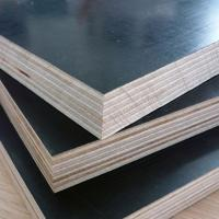 China 1220x2440mm Black Film Faced Shuttering Plywood wholesale
